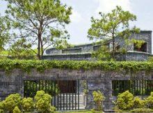 trồng cây xanh trên mái tôn